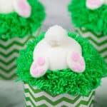 Bunny Butt Cupcakes