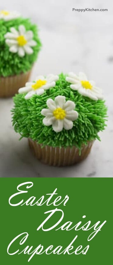 These daisy cupcakes are super cute and easy to make (not to mention DELICIOUS)! Perfect for the holiday season. @PreppyKitchen