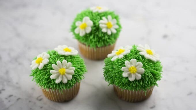 Easter Daisy Cupcakes