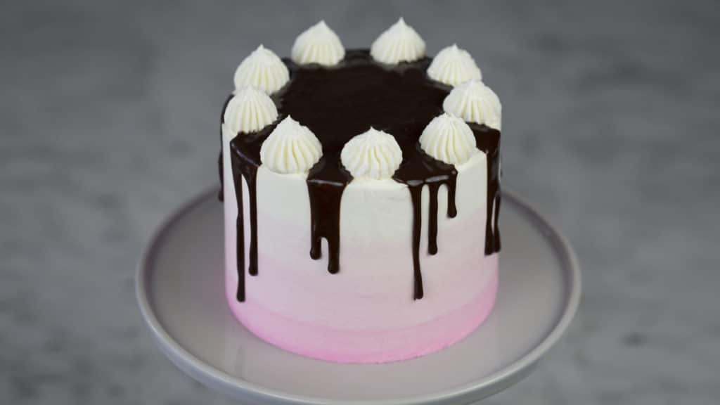 neapolitan cake 4