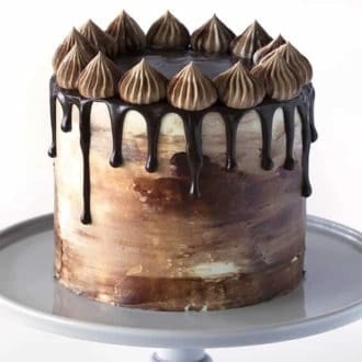 A Chocolate Peanut Butter Cake drizzled with chocolate ganache