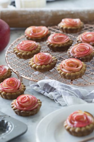 A photo of multiple apple rose tarts.