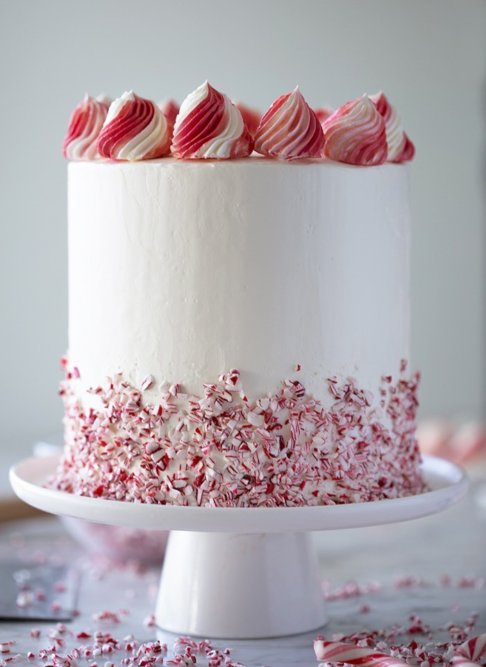 A photo showing the profile of a peppermint cake with a crushed candy cane skirt.