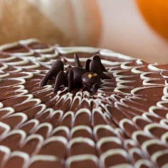 Spider web sheet cake
