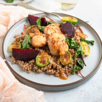 Sauteed scallops on a modern plate with cous cous