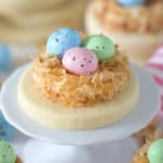 a sugar cookie with pastel chocolate eggs in a coconut nest.