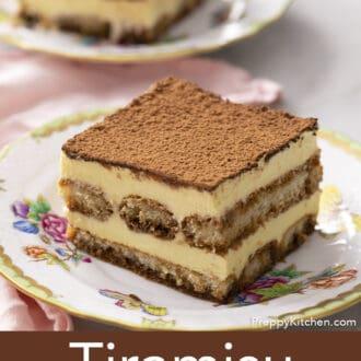 Tiramisu topped with cocoa powder.