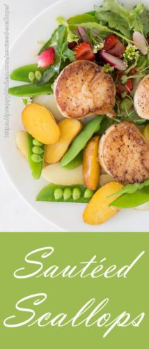 Seared scallops with baby potatoes, peas and salad