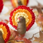 A photo of a chocolate cupcake with a buttercream turkey on top