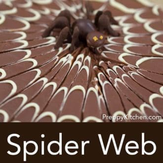 chocolate sheet cake with a white chocolate spider web decoration on top