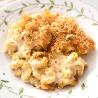 A plate of baked mac and cheese with toasted breadcrumbs.