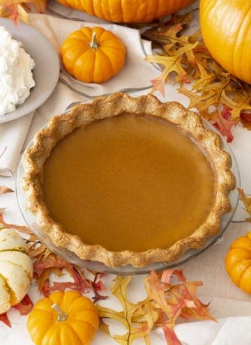 A pumpkin pie next to lots of mini pumpkins and a bowl of whipped cream