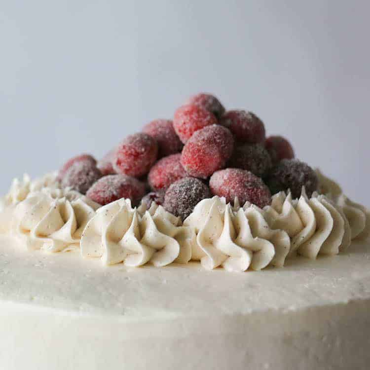 A closeup photo of a gingerbread cake topped with sparkling cranberries