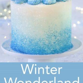 winter wonderland 3 layered cake on a stand