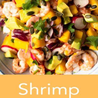 A pinterest graphic of shrimp ceviche