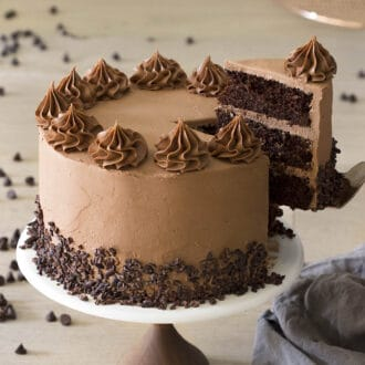 A delicious chocolate cake on a cake stand.