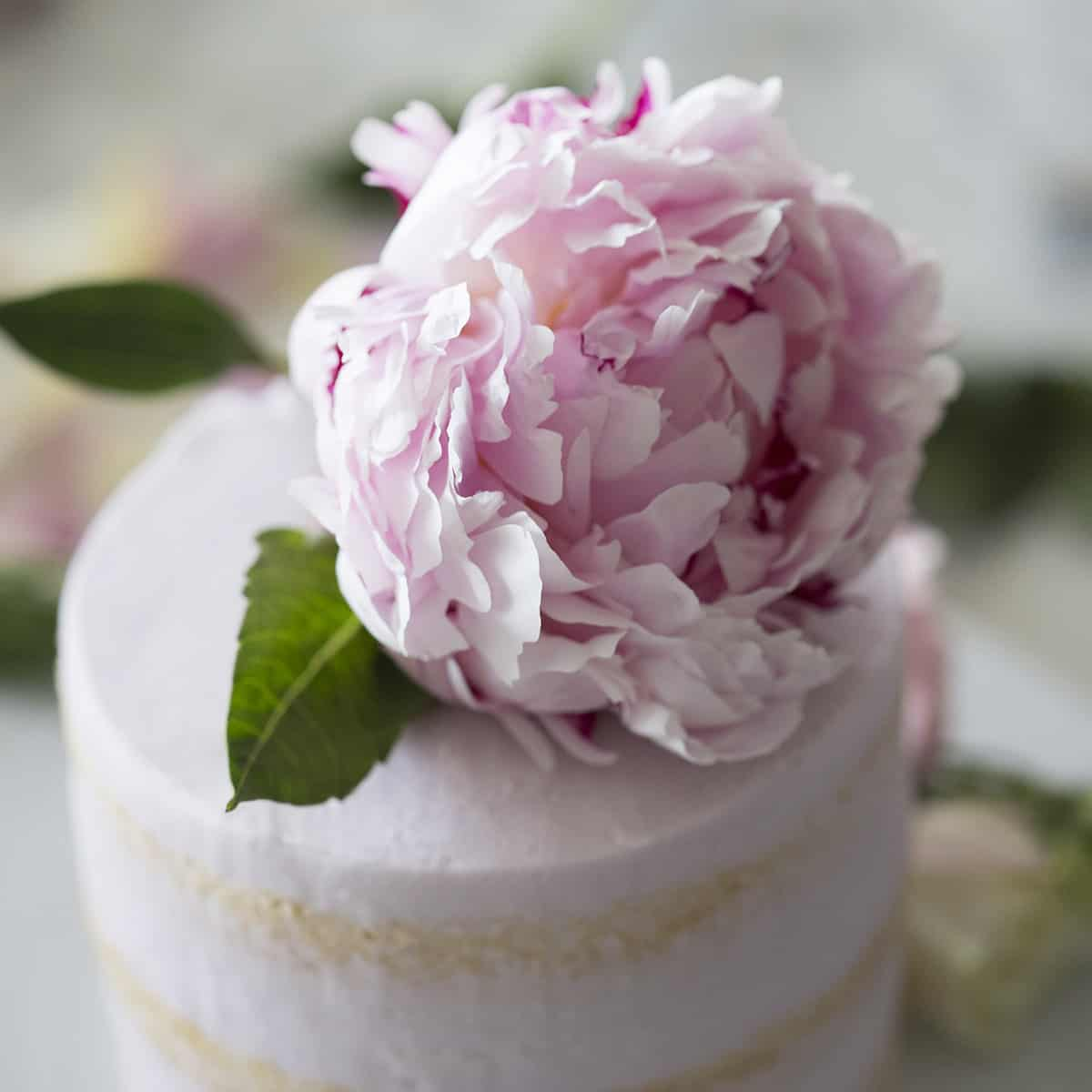 A close up photo of a giant pink peony on a dainty soft pink vanilla cake.