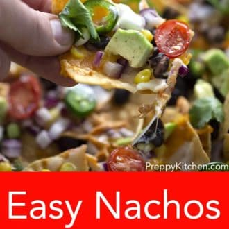 hand holding a nacho with various toppings