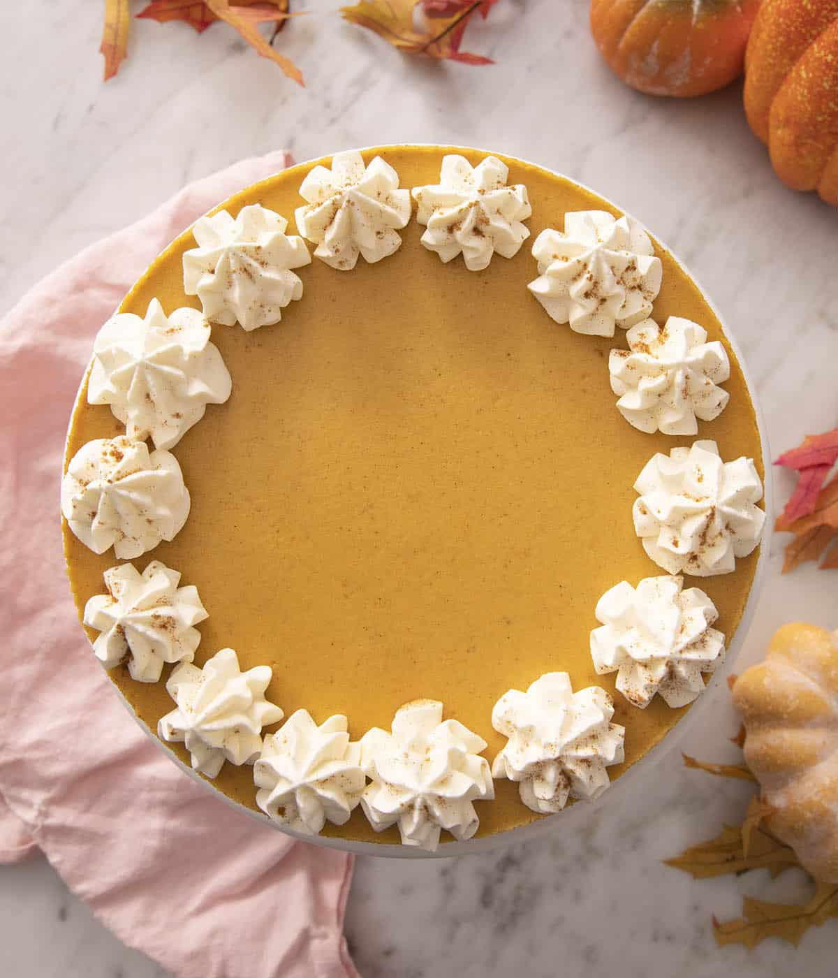 A pumpkin cheesecake with dollops of whipped cream at the edge.