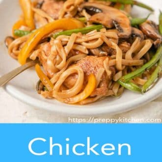 chicken lo mein in a white bowl with fork