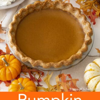 whole pumpkin pie in a glass pie dish
