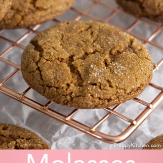 A sugar coated molasses cookie.
