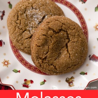 A Christmas plate with two molasses cookies.