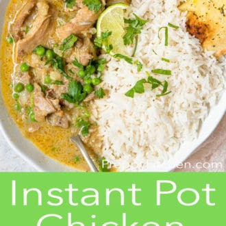 instant pot chicken curry in a white bowl