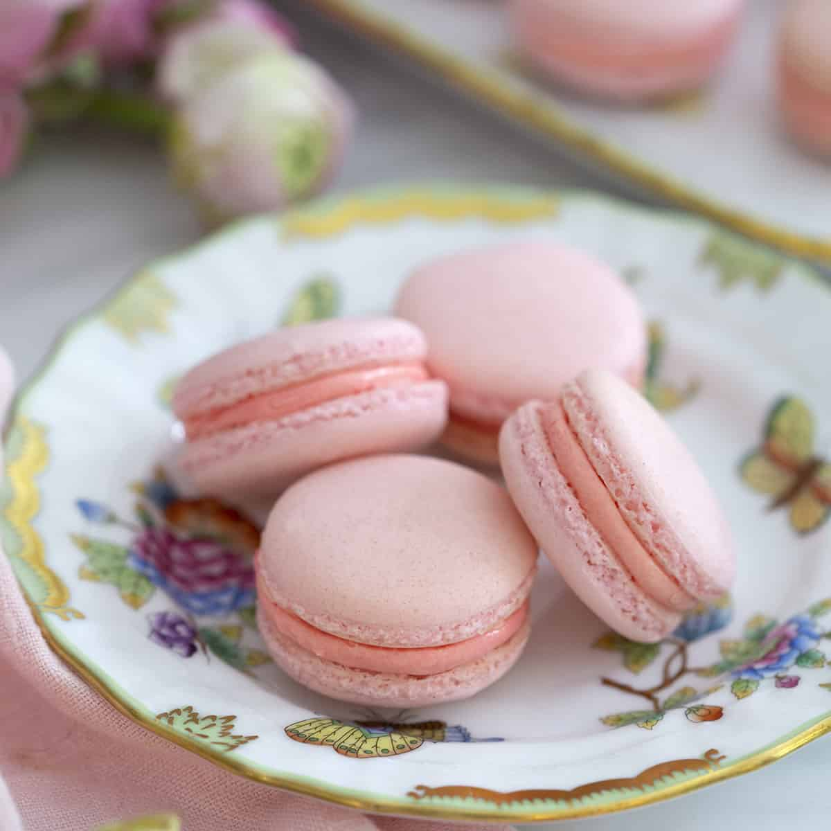 four macarons on a porcelain plate