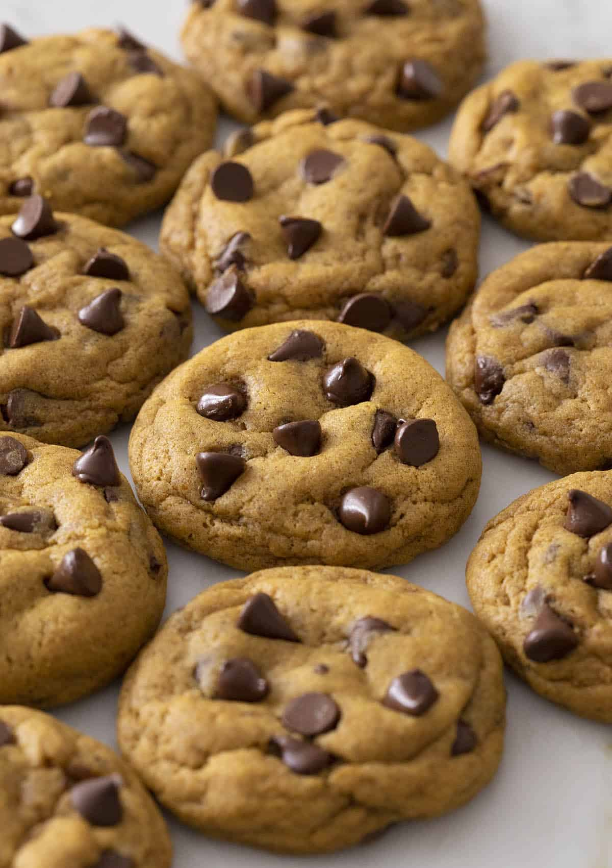 Soft and chewy pumpkin chocolate chip cookies on a marble counter.