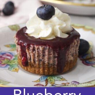 A closeupp photo of a mini blueberry cheesecake.