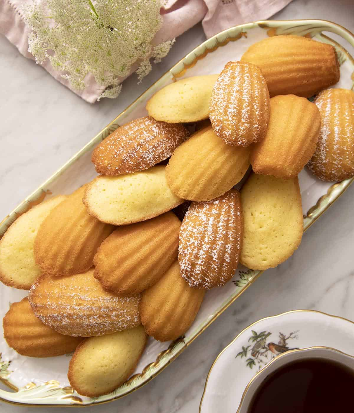 Madeleines dusted with powdered sugar on a tray.