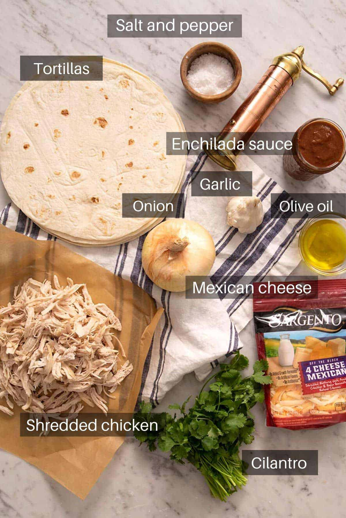 An overhead shot of all the ingredients you need to make chicken enchiladas