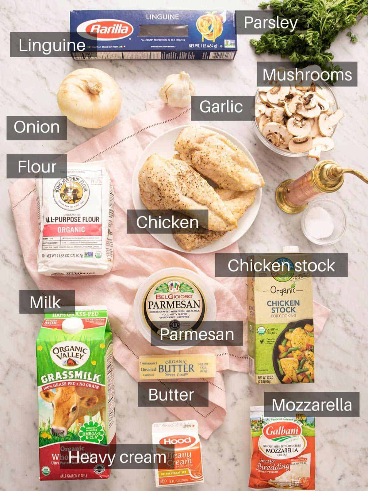 An overhead shot of all the ingredients you need to make chicken tetrazzini