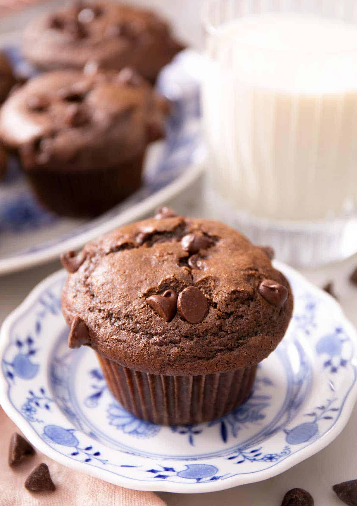 A close up of a chocolate muffin on a blue plate