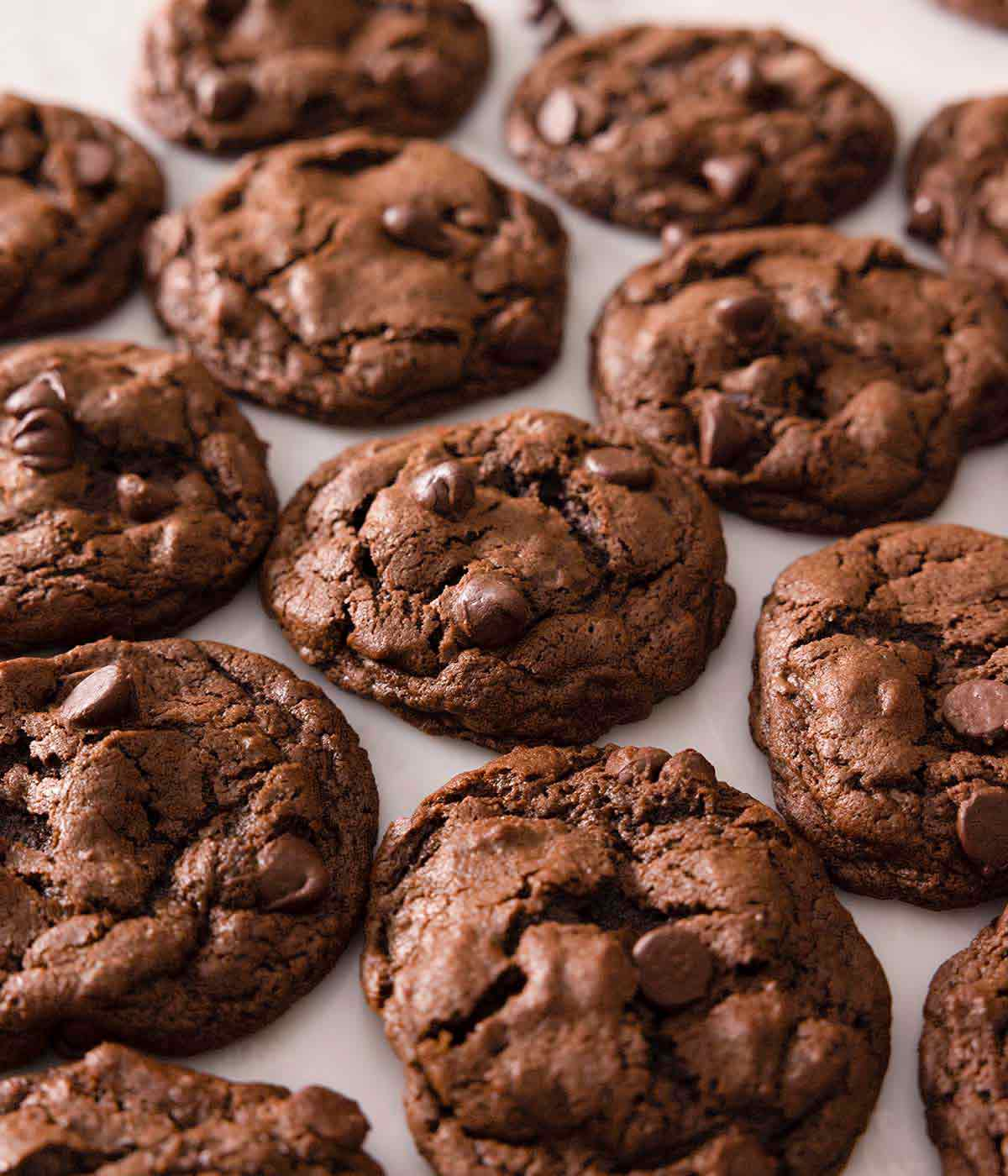 Multiple double chocolate chip cookies in a single layer on a counter.
